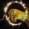 Цирки в Красноуральске